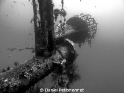 Cedar Pride wreck, Gulf of Aqaba. Wonderful and easy wrec... by Daniel Petitmermet 